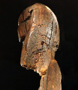 The head of the Shigir Idol seen in profile.
